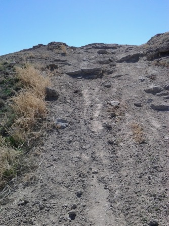 uphillrattlesnake